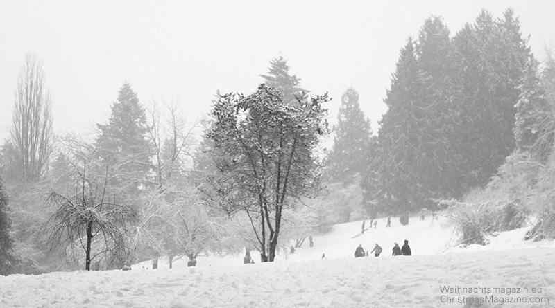 Schneegestoeber im Park